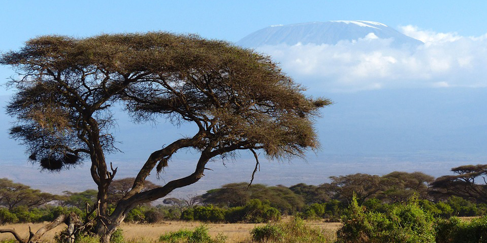 3 Days Safari in Amboseli National Park Kenya
