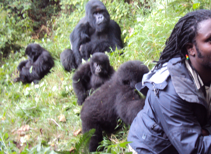 9 Days Rwanda Gorilla & Wildlife Safari Tour