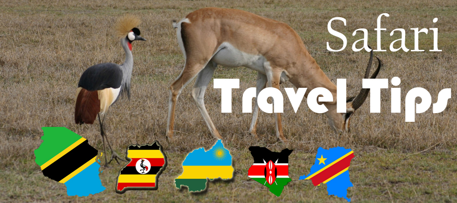 East Africa Safari Travel Tips